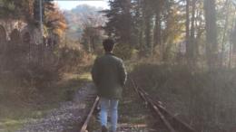Le rotaie della ferrovia sono diventate un giardino. Le piante hanno preso il posto del treno.